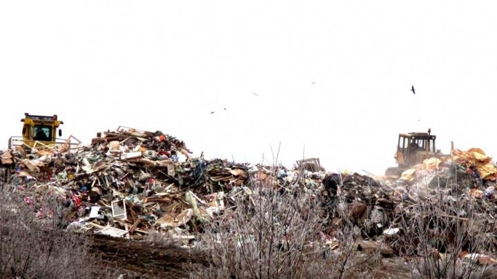 270 футбольных полей отходов: как мусорные свалки подбираются к Ярославлю