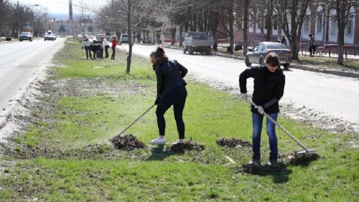 В Волгограде высадят пятьсот деревьев и соберут 400 тонн мусора