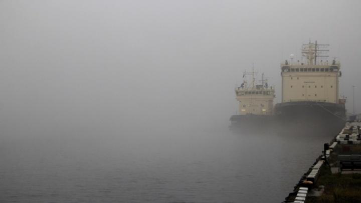 Синоптики: в выходные в Поморье придут слабые дожди и туман