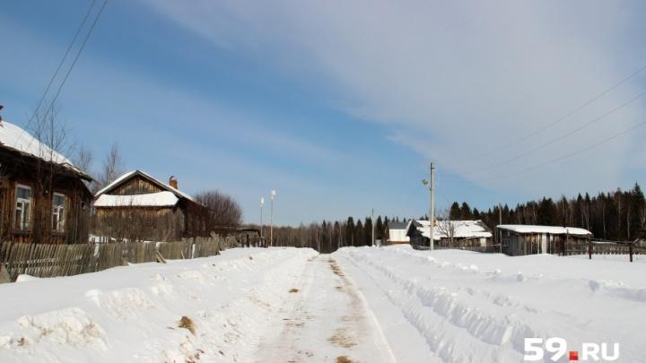 Власти Прикамья рассказали о планах на дорогу в поселок, где живут один школьник и 11 взрослых