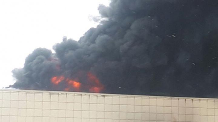 Пожар в Кемерово: что известно о трагедии в ТЦ «Зимняя вишня» на этот момент
