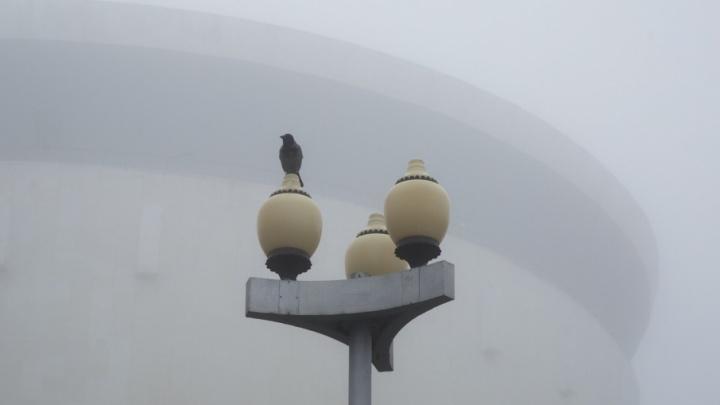 Волгоградская область остынет до -13 градусов