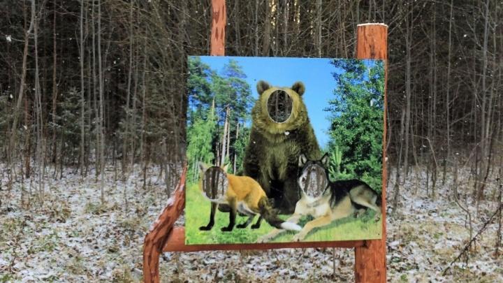 В Перми открыли экотропу, где можно сфотографироваться в образе диких животных