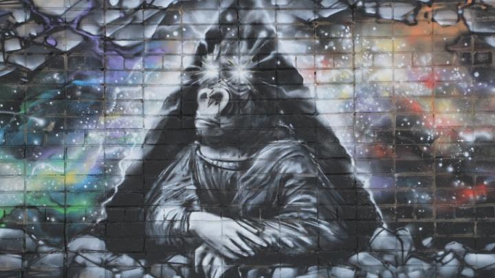 «Камбала — основа жизни»: послания, которые оставили архангелогородцам уличные художники