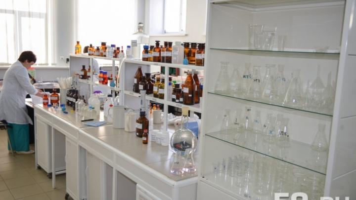 В Прикамье открылись лаборатории по исследованию клещей. Рассказываем, где они находятся и как работают