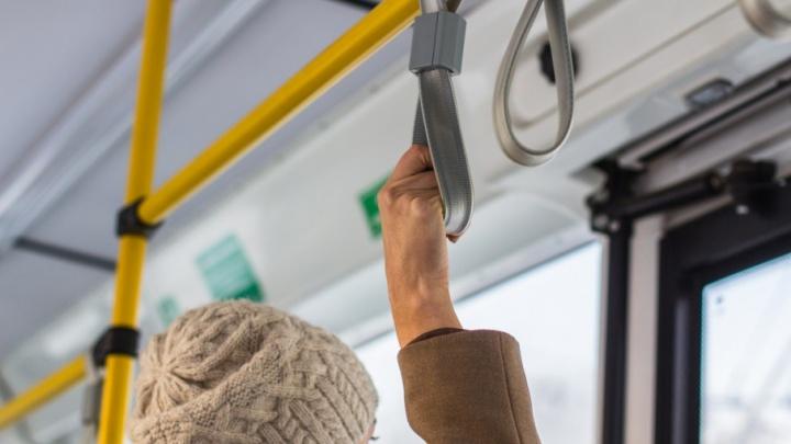 В Самарской области к ЧМ-2018 года закупят 9-метровые автобусы