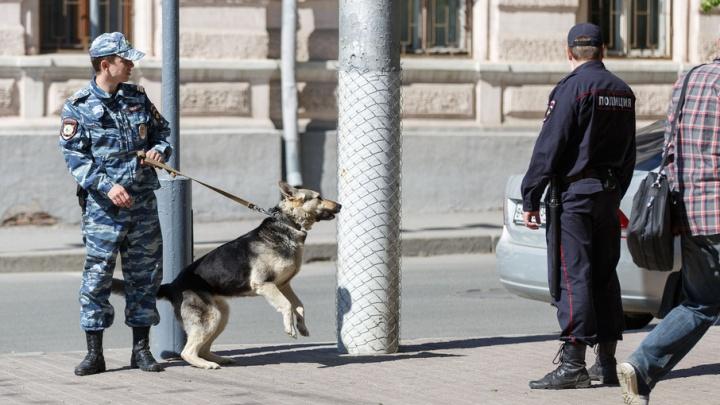 В Волгограде открылся музей полицейских собак