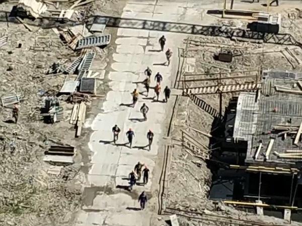 кадр из видео/vk.com