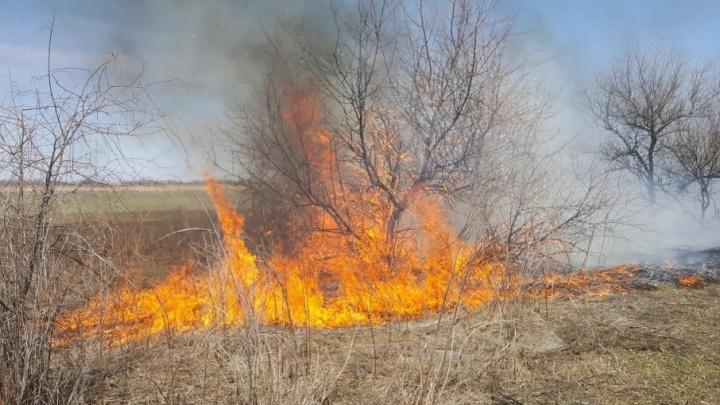 Краснослободск и пойму напротив Волгограда затянуло дымом большого пожара