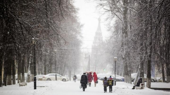 Метель и чрезвычайные ситуации: ярославские спасатели выпустили экстренное предупреждение