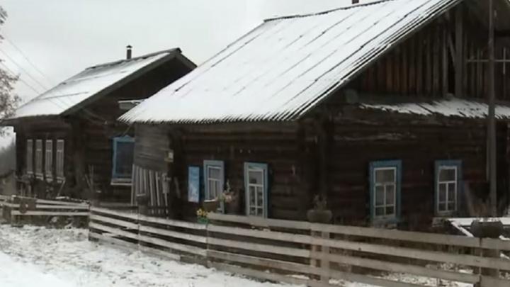 Нет санитарных комнат и постельного белья: из частного приюта в Прикамье срочно забрали шесть человек