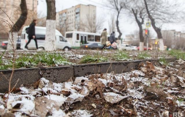 Волгоград вернулся из весны в зиму