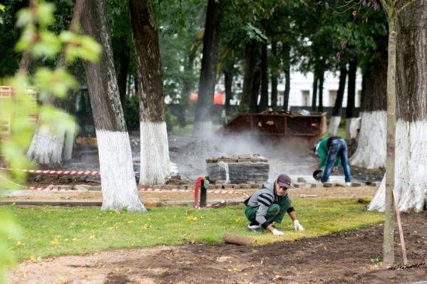 Рабочие раскатывают рулоны с газонной травой