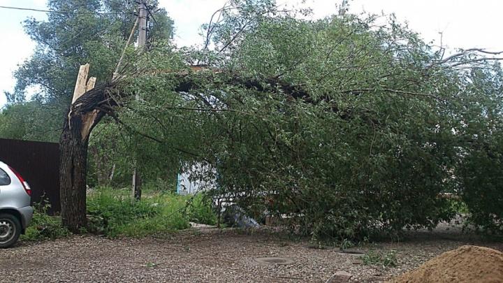 Ураган оставил без света жителей четырех районов Ярославской области