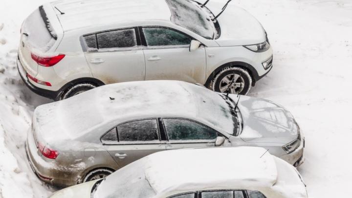 Дополнительную парковку на 40 мест возле Воронежских озер сочли ненужной
