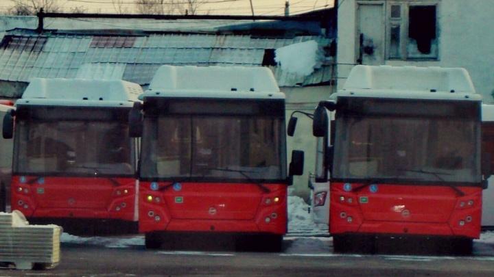В Тюмень приехали первые газовые автобусы