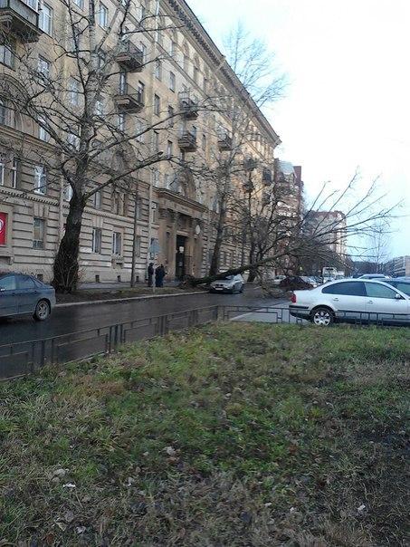 Манчестверская улица
