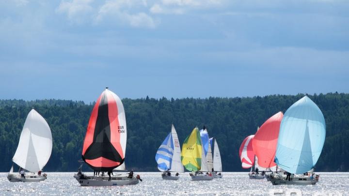 Яхты, ветер, гонка: полсотни экипажей стали участниками Парусной регаты на кубок «Демидково»