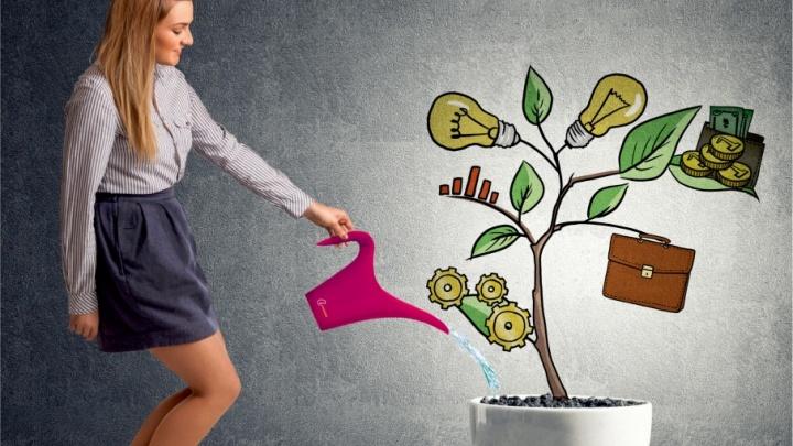 «Клюква» запустила новый вклад с повышенной доходностью – «Мой прибыльный»