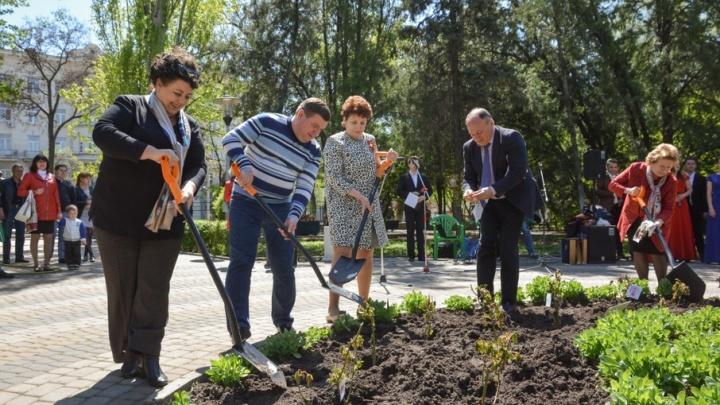 Донецкие розы высадили в ростовском парке Горького