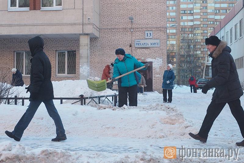 Субботник возле детской поликлиники №53 Красносельского района