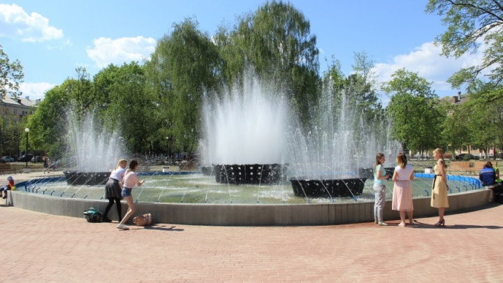Мэр Ярославля потребовал воткнуть альпийскую горку возле «туалетного фонтана»