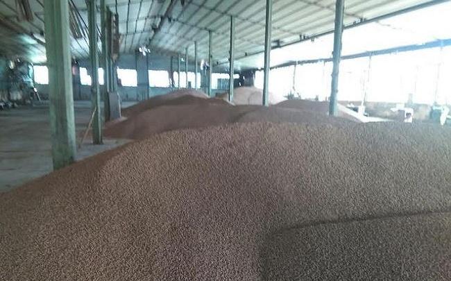 Судебные приставы арестовали 500 тонн зерна у тюменской компании
