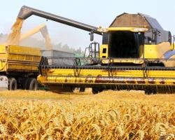 Южный Урал намолотил один миллион тонн зерна