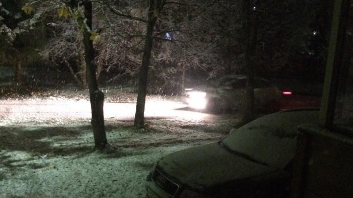 Зима пришла: Ярославскую область завалило снегом в октябре
