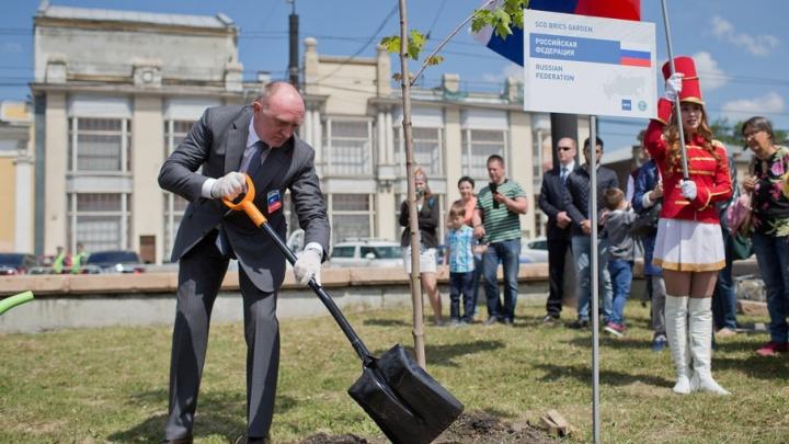 В Челябинске в «Саду ШОС и БРИКС» высадили клёны