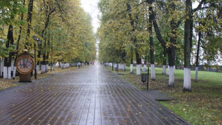 В центре Ярославля поставят чугунный театральный забор