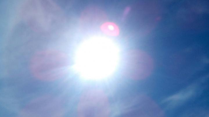 В Самарской области объявили штормовое предупреждение из-за жары и ветра