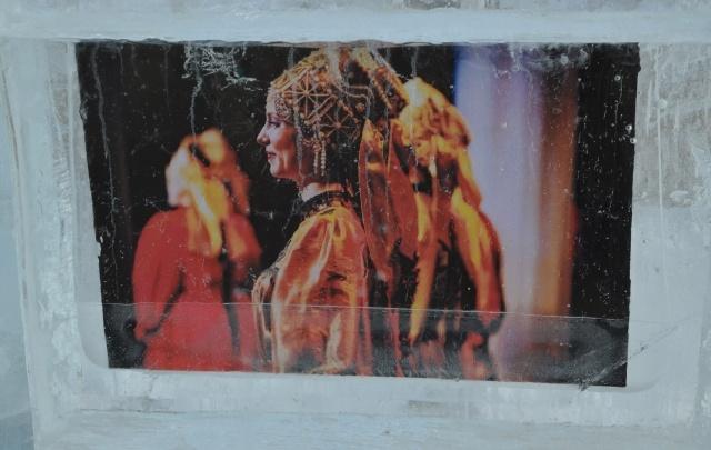 «Открытый Север»: в столице Поморья работает уникальная ледовая фотовыставка