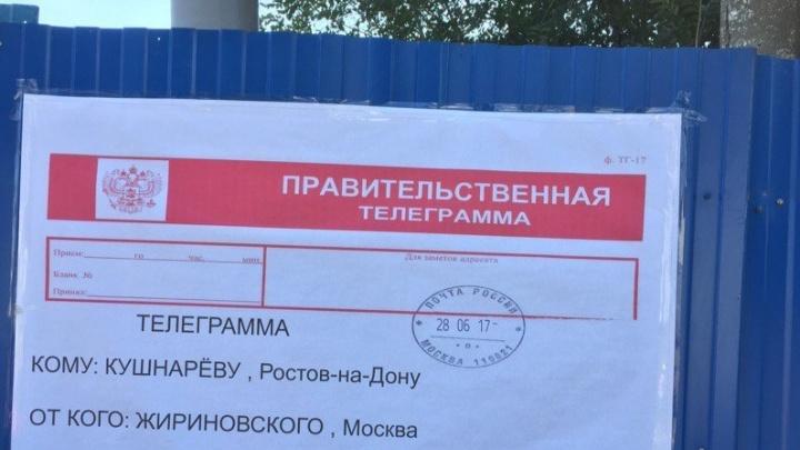 Требование Владимира Жириновского открыть мост Стачки в отделении ЛДПР назвали шуткой