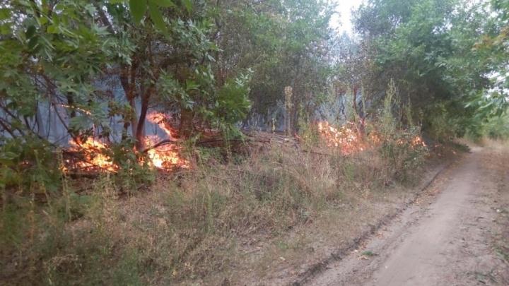 МЧС призывает волгоградцев тушить пожары своими силами