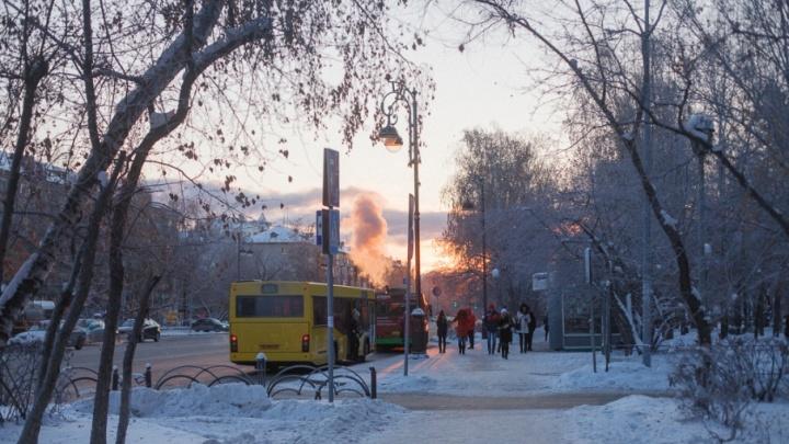 Устали мёрзнуть: выходные встретят тюменцев тёплой погодой
