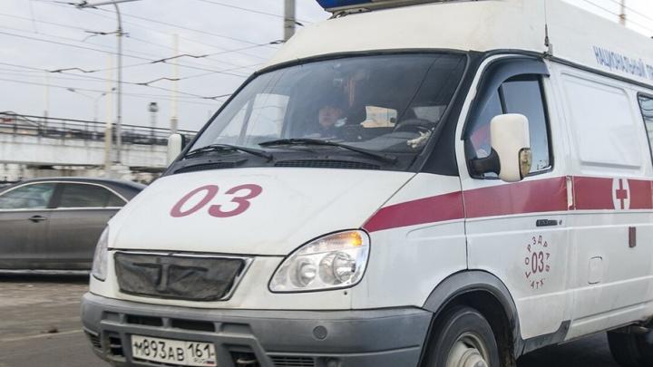 В тройном ДТП с фурой на донской трассе пострадали женщина и девочка