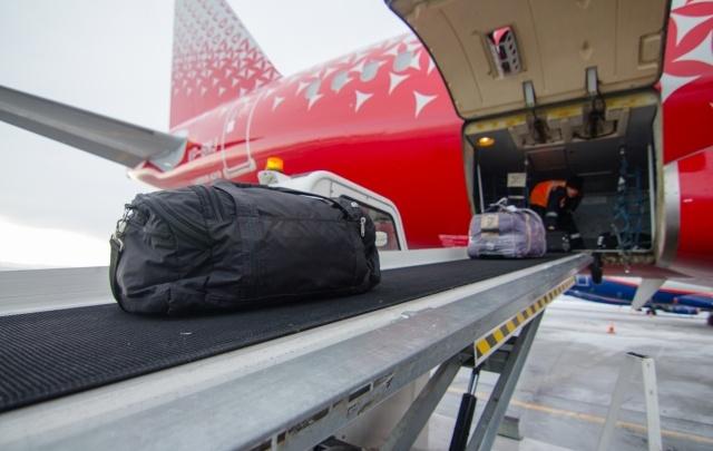 Челябинскую грузовую компанию оштрафовали за потерю в аэропорту африканского пса