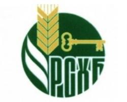 Ростовскому филиалу «Россельхозбанка» клиенты доверили 16,8 млрд рублей