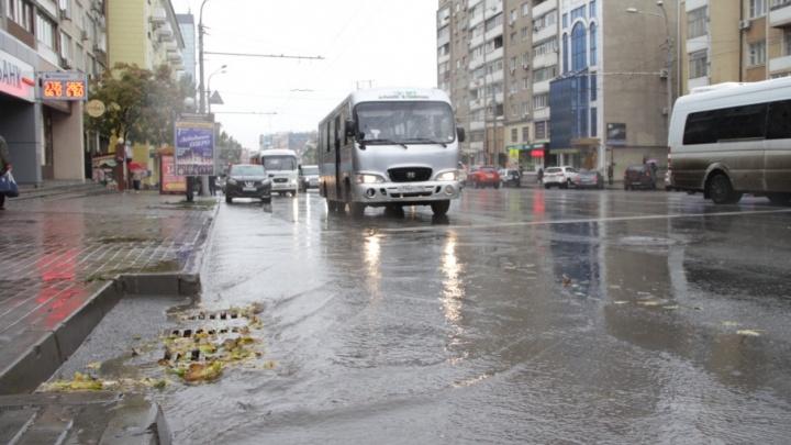 Готовь телегу зимой: ростовские ливневки очистят от мусора к Новому году