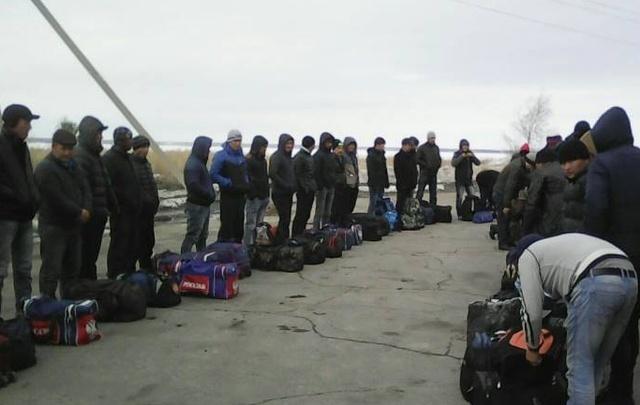 Полиция и ФСБ задержали на Каширинском рынке Челябинска 50 мигрантов
