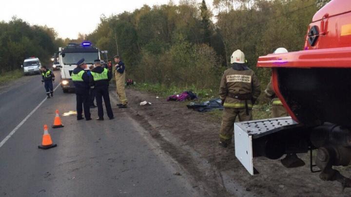 Экспресс-тест показал, виновник смертельного ДТП в Приморском районе был под наркотиками