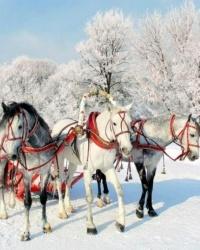 Три главных совета на три зимних месяца