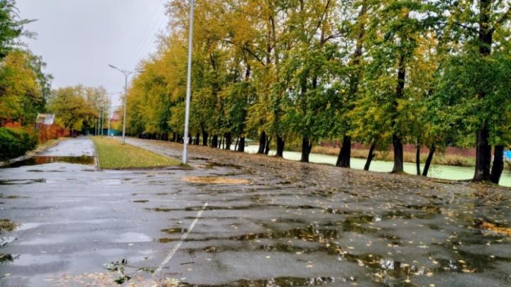 В Курган в эти выходные придут похолодание и дожди с порывистым ветром