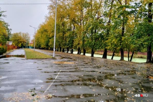 В эти выходные курганцев ожидают понижение температуры и дожди с ветром