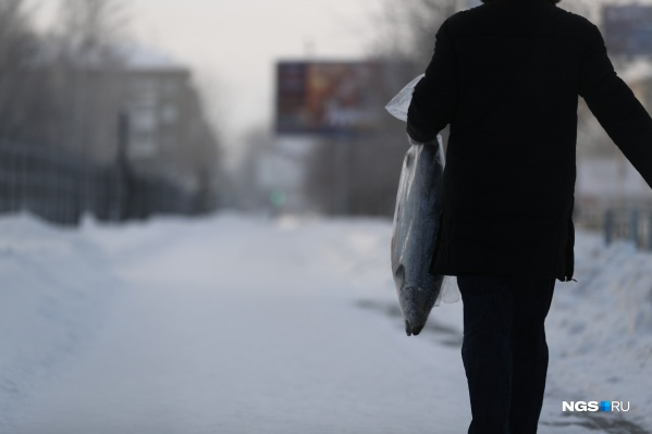 Новосибирцы проводили морозный день по-разному: кто-то сидел дома, а кто-то передвигался по городу и даже нырял в прорубь