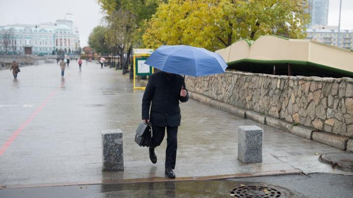 Будет шквалистый ветер: свердловские синоптики предупредили о непогоде