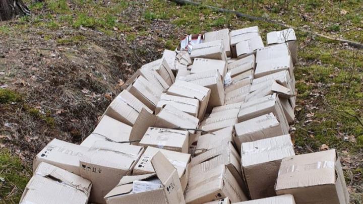 В Дзержинске осудят медсестру, выбросившую 67 коробок с вакциной от гриппа