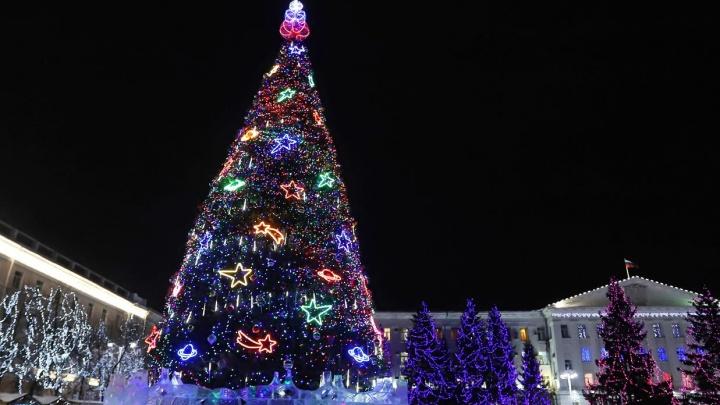 В Курганской области после рекомендаций Путина 31 декабря станет выходным