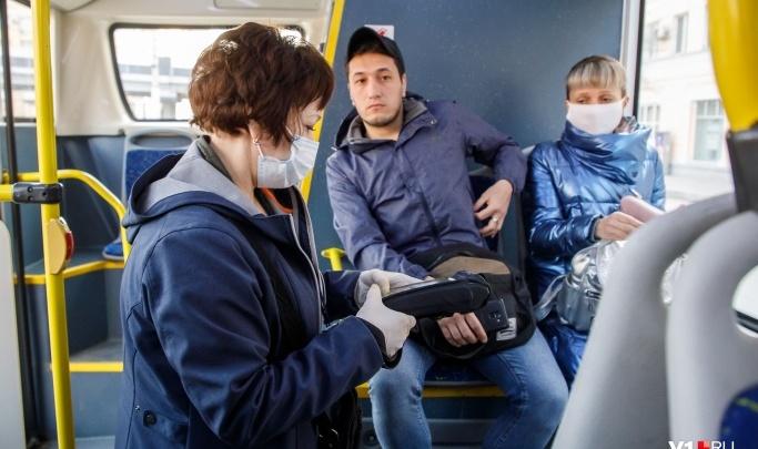 В Волгограде вернули к жизни еще два автобусных маршрута: расписание движения